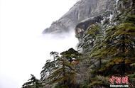 安徽黄山迎今冬首场雾凇景观