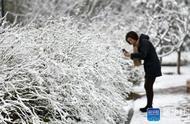 北京下雪啦