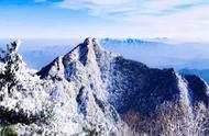 今日大雪!一大波惊艳雪景照来啦,洛阳这些地方美得宛如童话世界!