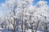 「节气」风雪连天,今日大雪