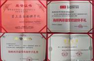 秋葵花茶制作方法秋葵花茶多少钱一斤