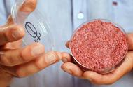 """""""人造肉""""兴起的背后:比牛肉价格贵1倍!中国企业会跟进吗?"""