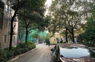 长沙9岁男童遇害案嫌犯:抗拒服药,妻子曾多次被家暴回娘家