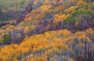 摄影师镜头里的秋天,令人心旷神怡