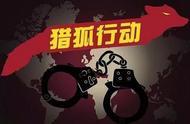 潜逃境外三年!一走私大叶紫檀的犯罪嫌疑人被提起公诉