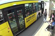 盲人带导盲犬上公交屡次被拒,盲人的权利在哪?