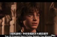 《哈利波特》中十大被你忽略的疯狂细节
