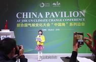 9岁中国女孩联合国大会演讲 全程飚英文,又是一个别人家的孩子