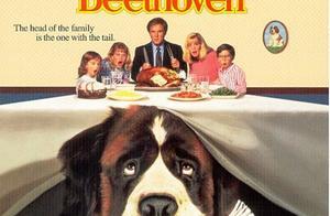 与狗狗有关的五部经典电影,还没看过就OUT啦!