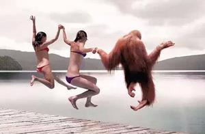 五月不脱毛六月猕猴桃,不脱毛你敢露出双腿吗
