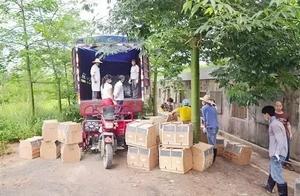 为了南宁人喝上干净的水 7000多只猴子已搬家