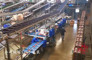 学习啦!29个农户投资成立的番茄包装分销公司,最后还会有分红?