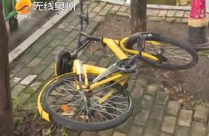 泉州:废弃的共享单车堆积如山,严重困扰附件居民,OFO运维困难