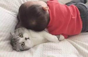 主人让小猫咪陪儿子玩耍,结果猫咪累成这样子,想离家出走