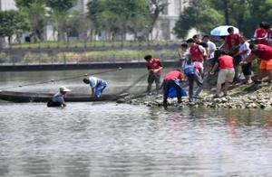 电子科大捕捞1500余斤大鱼 全校毕业生共享全鱼宴