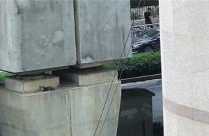 郑州一只喵星人被困7米高桥墩三四天