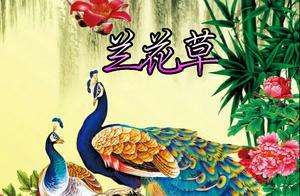 美图壁纸《百鸟朝凤》——你的留言很幸运第一季