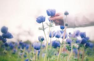 突如其来的爱情,需要最长久的时间才能治愈