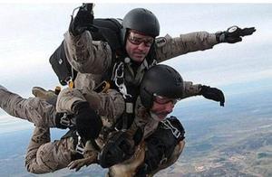 特种兵与军犬一起跳伞,狗狗很不情愿!