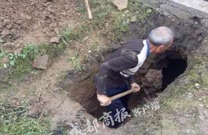 新闻早餐车|四川发现一座宋代古墓;孕妇吃太好产后差点没命
