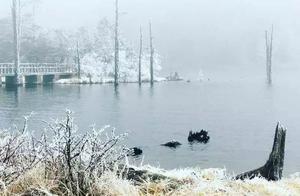 惊艳!螺髻山景区迎初雪,这画面太美……