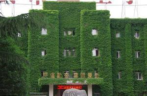 """西安一学校教学楼被垂直绿化墙""""吃""""掉,变身""""空调房"""""""
