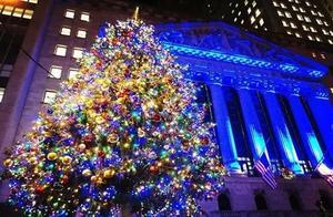 圣诞节过后,用完的圣诞树去哪了?