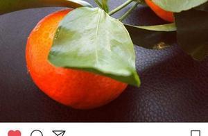 王源ins更新:橘子?源源你什么意思?
