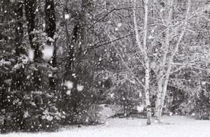 重要天气预报!无锡周四将迎暴雪,积雪深度达5-15厘米