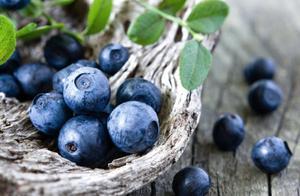 蓝莓和草莓能一起吃吗 可以一起榨汁哦