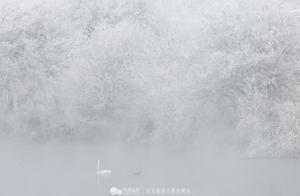 新疆伊犁冬季雪景-天鹅泉