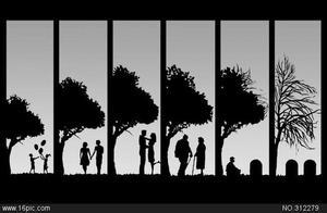 人生感悟:人的一生应该这样诠释爱