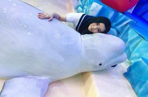 可爱白鲸被范冰冰亲吻闭眼享受,李晨半夜发微博网友:这你能忍?