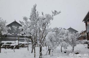 螺髻山下雪了 快来欣赏千树万树梨花开