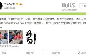 库克造访书法大师, 苹果iPad Pro上学写中国汉字