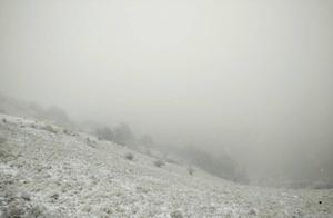 美呆!神农架迎来入秋以来第一场雪