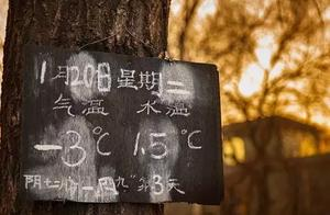 不寒北京什刹海,居然有80几岁的奶奶冬泳