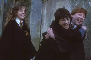 当哈利波特和他的朋友们步入中年......