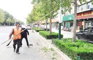 潍坊:为摘银杏果挥竿敲打银杏树 希望市民自觉爱护