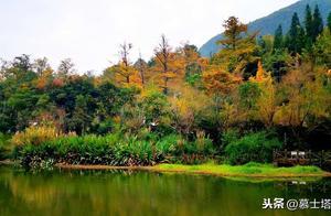 贵州不仅是避暑天堂,也是赏秋好地方,这5个地方有贵州最美秋天