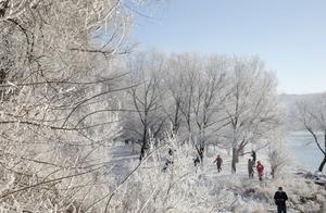 吉林省吉林市松花江畔阿什雾凇长廊出现了今冬首场较好雾凇