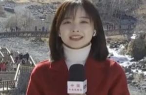 盘点颜值超高记者!王冰冰与刘烨白宇同台毫不逊色,从此爱上新闻
