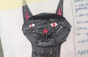 猫走丢,女孩制作寻猫启事并配图,灵魂画风笑坏网友:能找到才怪