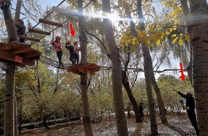 贾乃亮独自带甜馨玩极限运动,紧盯女儿神情紧张,8岁甜馨超勇敢