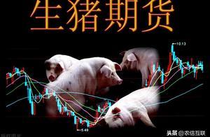 生猪期货今日上市!9月合约定价30.68元,会影响猪价?难