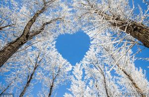 冬天,是北方一年之中最难熬的季节。