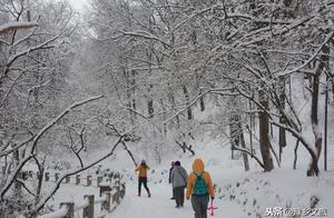 小雪节气将至!河南会下雪吗?小雪有哪些农谚现在还准吗?