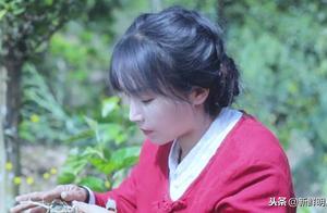 李子柒年薪1.7亿,她选另一半得会挖地!网友:竞争对手太多了