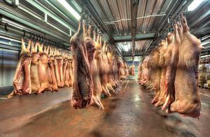 天津冷库工人检出核酸阳性,该批货物为4天前从德国进口的猪肉,全部员工已到隔离点检测