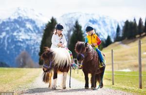 它是世上最小的马,身高仅56.7厘米